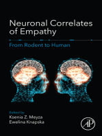 Neuronal Correlates of Empathy: From Rodent to Human