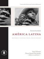 Imaginando América Latina: Historia y cultura visual, siglos XIX-XXI