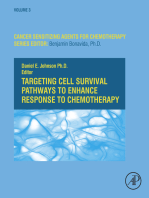 Targeting Cell Survival Pathways to Enhance Response to Chemotherapy