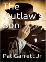 The Outlaw's Son