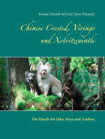 Chinese Crested, Viringo und Xoloitzcuintle