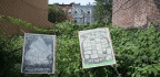 Homes Or Gardens? Developers And Urban Farmers Grapple Over Vacant Land