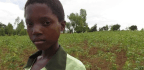 Confronting A Sexual Rite Of Passage In Malawi