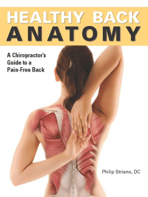 Healthy Back Anatomy