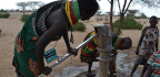 Kenya's Thirsty Year
