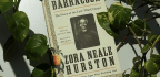 'Barracoon' Brings A Lost Slave Story To Light