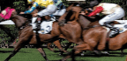 The Gambler Who Cracked The Horse-Racing Code