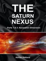 The Saturn Nexus