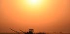 Washington Politics Adding To Mental Health Crisis Among Farmers