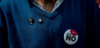 Irish Anti-abortion Campaigners Dodge Google's Ad Ban