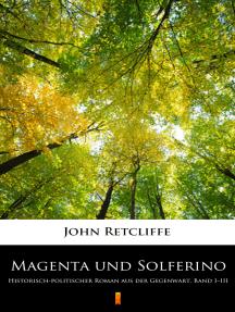 Magenta und Solferino: Historisch-politischer Roman aus der Gegenwart. Band I–III