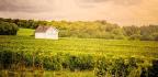 Explore France's Champagne Capital, The Home Of Veuve Clicquot's Fine Fizz