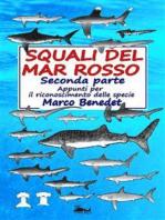 Squali del Mar Rosso 2a parte - Le specie