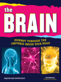 The Brain: Journey Through the Universe Inside Your Head