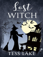 Lost Witch