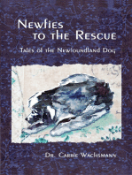 Newfies to the Rescue