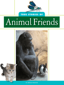 True Stories of Animal Friends