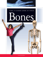 Take a Closer Look at Your Bones