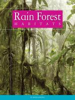 Rain Forest Habitats