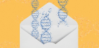 The Little-Known Nonprofit Behind the CRISPR Boom