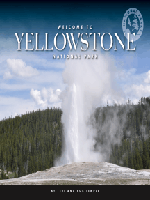 Welcome to Yellowstone National Park