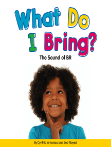 What Do I Bring?: The Sound of BR