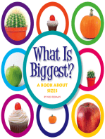 What Is Biggest?
