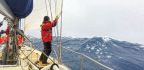 Southern Ocean Sweepstakes