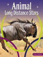 Animal Long Distance Stars