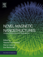 Novel Magnetic Nanostructures