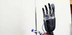 Why Would You Want a Prosthetic Hand That Feels Pain?