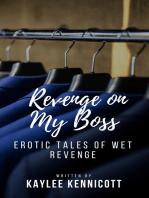 Revenge on My Boss