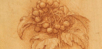 On Recreating Leonardo da Vinci's Vineyard (and His Wine)