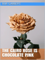 The Cairo Rose is Chocolate Pink