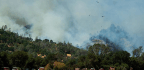 Calif. Blaze Erupts In 'Year-round Fire Season'