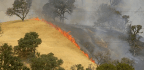 California Wildfire Grows To 86,000 Acres With Containment At 27 Percent
