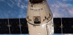 Spacex Delivers AI Robot, Ice Cream, Mice To Space Station