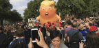 Large Protests, Baby Blimp Greet Trump In London And The U.K.