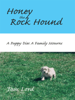 Honey the Rock Hound