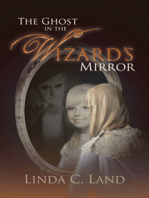 The Ghost in the Wizard'S Mirror