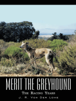 Merit the Greyhound