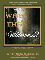 Why the Wilderness?