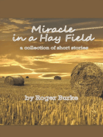 Miracle in a Hay Field