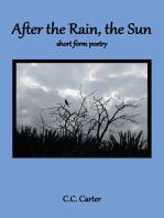 After the Rain, the Sun