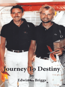 Journey to Destiny: A Love Story