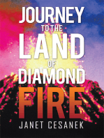 Journey to the Land of Diamond Fire