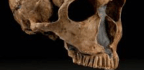 Research Suggests Another Way Neanderthals Were Like Us