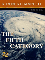The Fifth Category