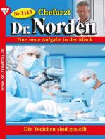 Chefarzt Dr. Norden 1113 – Arztroman