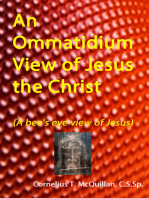 An Ommatidium View of Jesus, the Christ (A bee's eye view of Jesus)